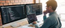 le profil des développeurs