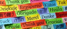 Les langues étrangères : un atout essentiel dans un CV anglais